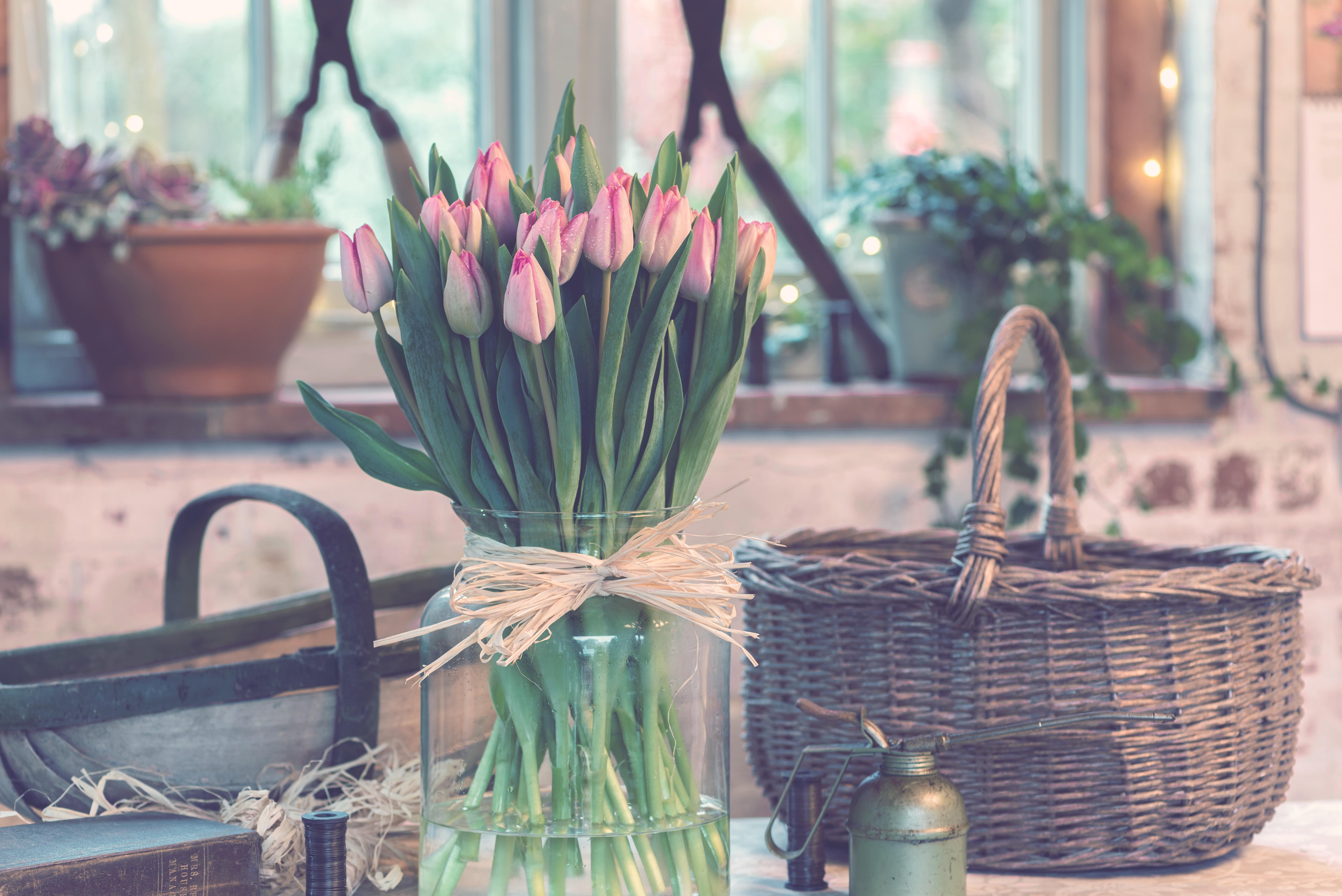 como mantener tulipanes frescos
