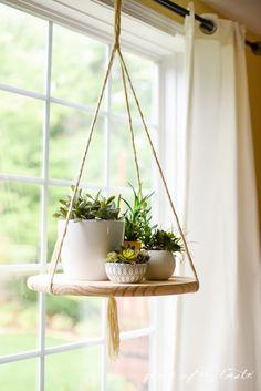trucos para tener plantas en espacios chicos