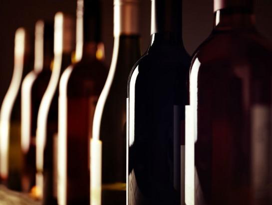 Festival de vinos: delicioso viaje a tierras vinícolas