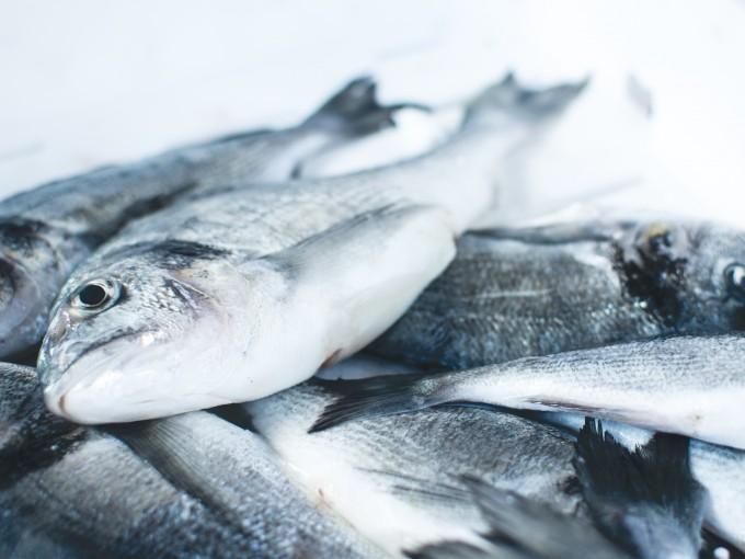 Aprende a mantener tu pescado fresco.