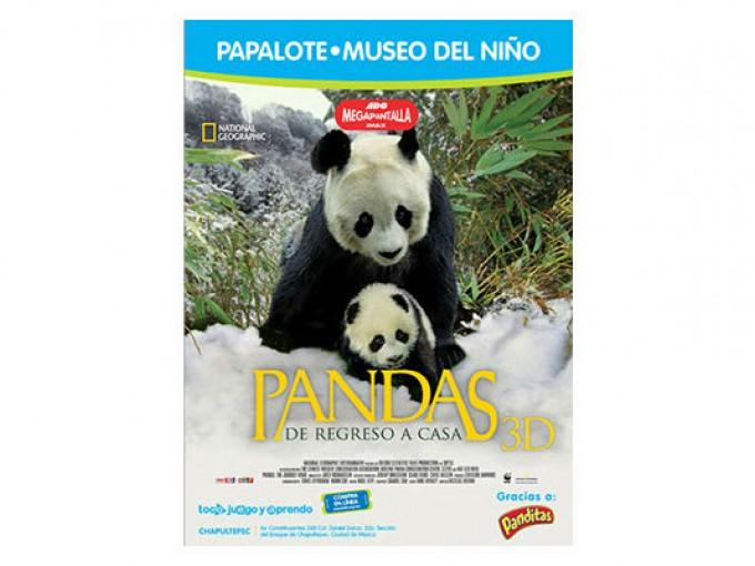 Pandas en el Papalote