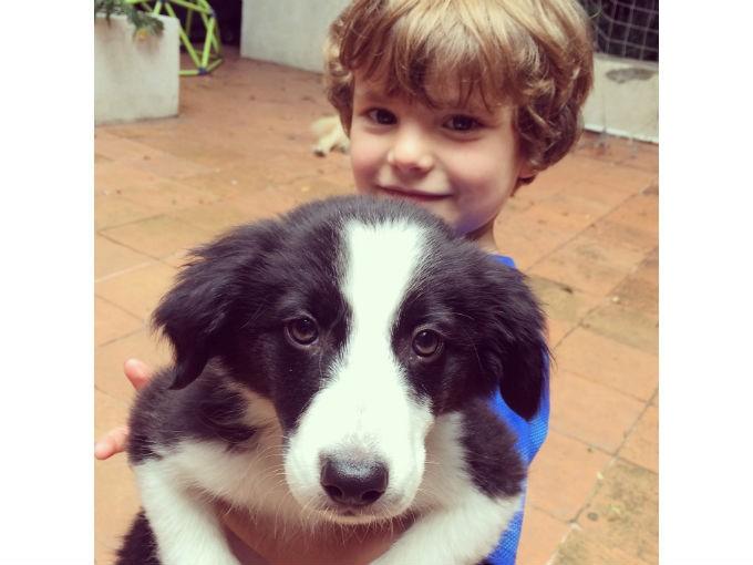 Confesiones de Mamá: ¿Tener o no tener un perro nuevo?