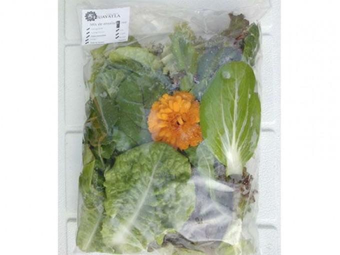 Tiendas orgánicas y saludables en el DF