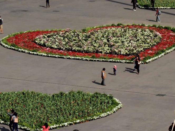 Corazón de petunias en el Zócalo