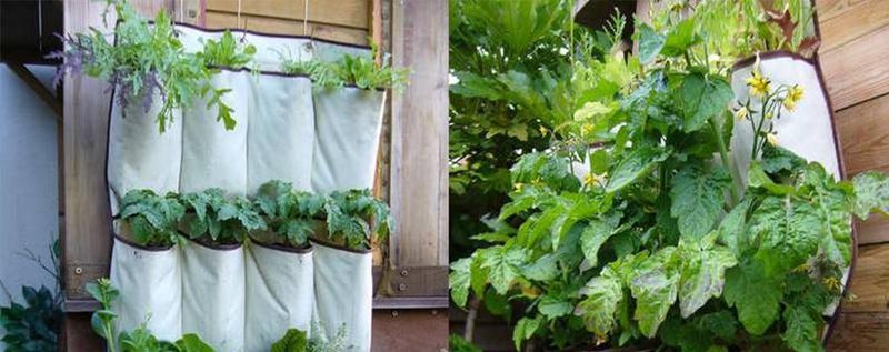 Jardines verticale sideas