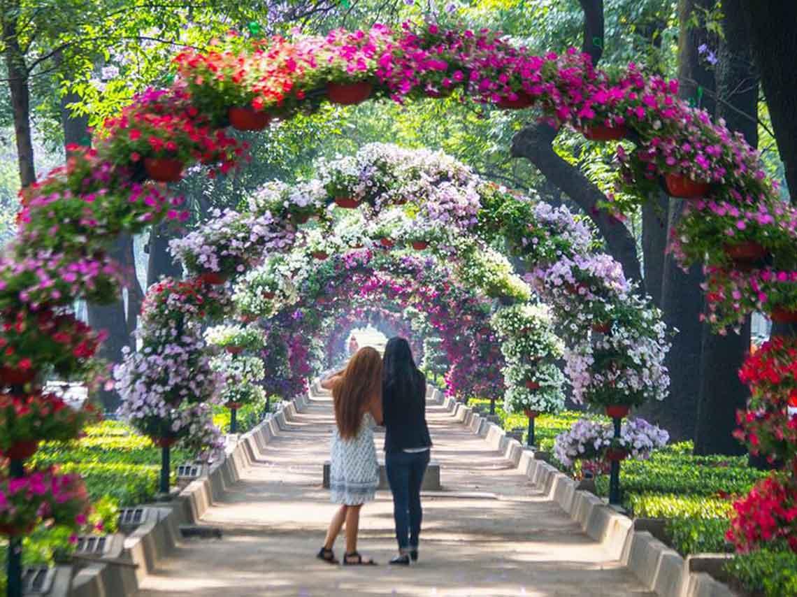 Festival de flores y jardines 2018 me lo dijo lola for Plantas para jardin