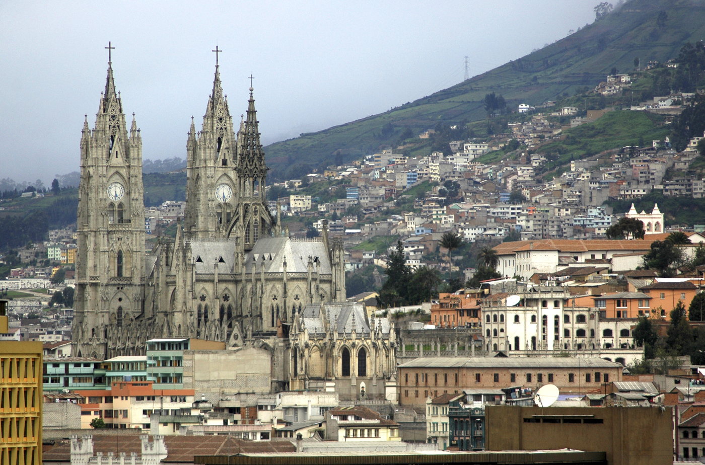 Quito net worth