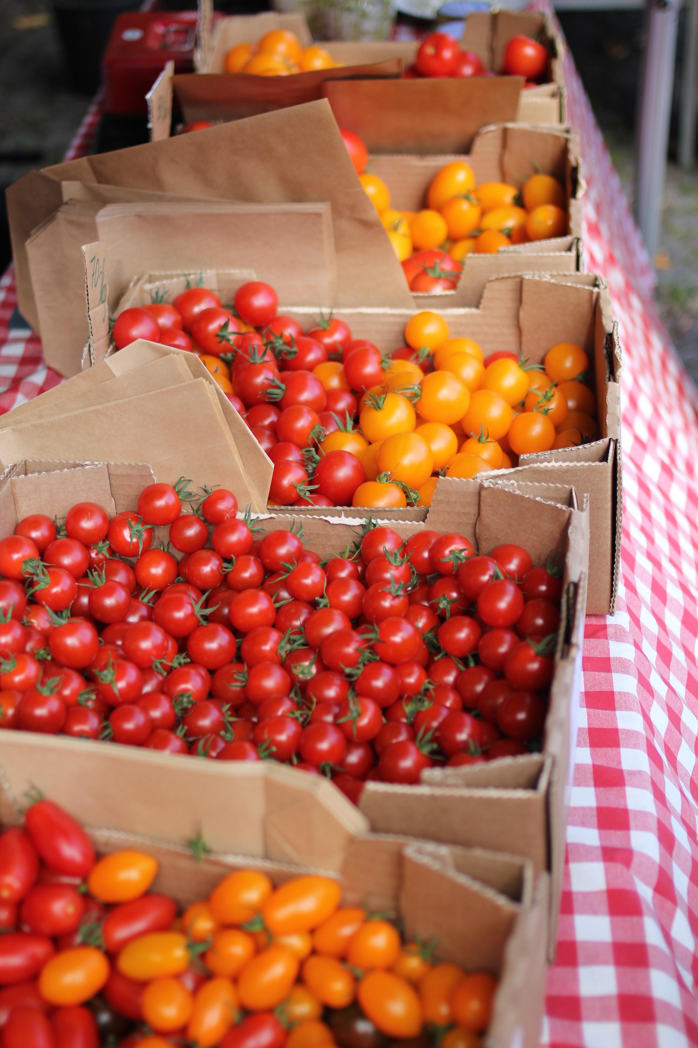 Dieta del tomate (jitomate) para bajar de peso | Me lo