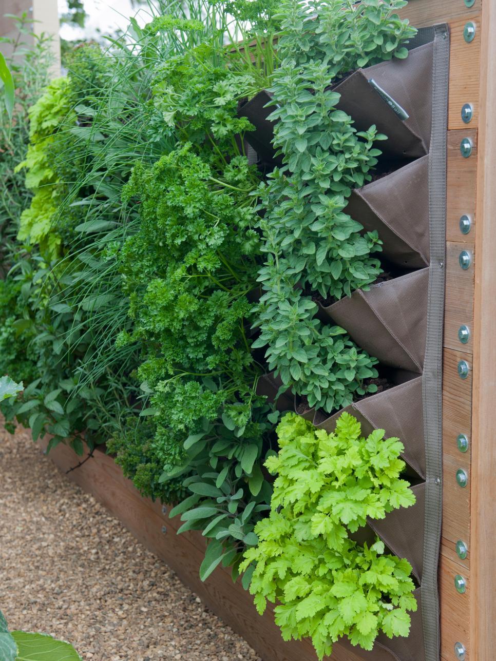 5 ideas para tener plantas en espacios pequeños