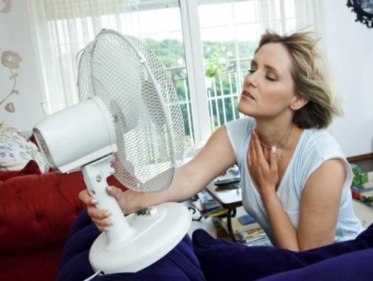 Mejores ventiladores me lo dijo lola - Ventiladores silenciosos hogar ...