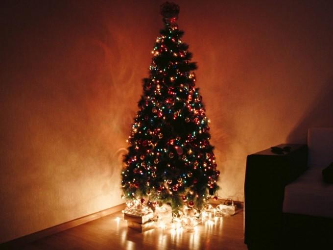 ¿Cómo llegó la tradición del árbol de Navidad a México?