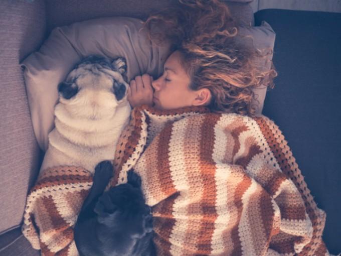 Tu mejor compañero para dormir es tu perro, no tu pareja