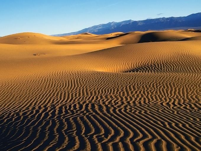 Medanos de Salamayuca. Este lugar me recuerda a los desiertos de medio oriente, porque son tan increíbles que no podrás creer que estén en Chihuahua. Si te gusta el desierto es un must para ti. (Foto: pinterest).