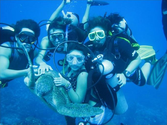 El buceo y el snorkel también tienen un lugar de privilegio entre las actividades que se realizan en este destino. El lugar ideal para estas actividades es el Parque Nacional Marino Los Arcos.  Foto: Wikipedia