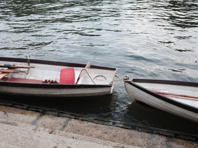 Otras actividades que se destacan en Puerto Escondido son el buceo y la pesca deportiva del Pez Vela, el Dorado y el Marlin. Foto: Pxhere