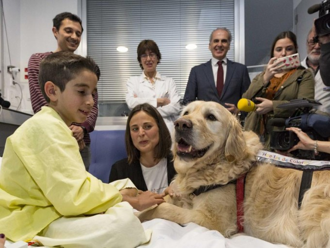 El objetivo es tener resultados concretos sobre los beneficios de la terapia asistida con perros en niños ingresados en Cuidados Intensivos Pediátricos,