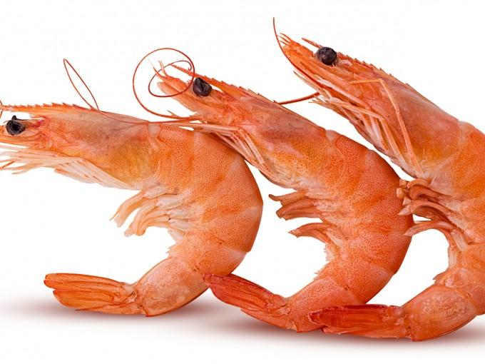 Debido a la presencia de cadmio los niños menores de 3 años también deben evitar langostinos, camarones cigalas, o el cuerpo de crustáceos parecidos al cangrejo.