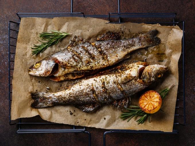 Por su alto contenido en mercurio los bebés (incluso menores de tres años) deben evitar el consumo de pescado, sobre todo las siguientes especies.