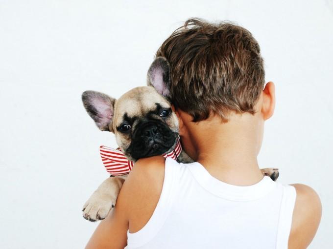 Cómo elegir la primera mascota de mis hijos Foto: Unsplash