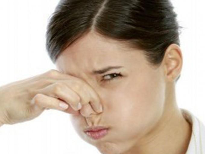 Como quitar malos olores me lo dijo lola - Como eliminar los malos olores ...