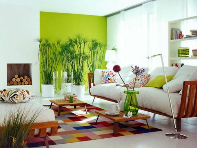 Plantas esquineras en tu casa me lo dijo lola for Colores para decorar interiores
